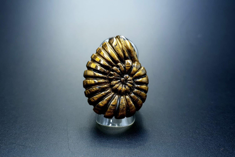 """""""Ammonite"""" Ring"""